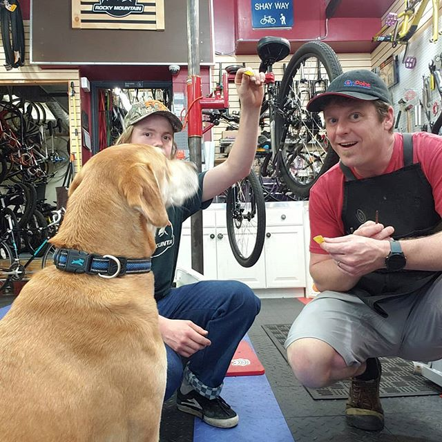 Sometimes we get lucky and our customers bring their pup to help make us feel better! Thanks Hanna's for letting Riley hang out with us today!