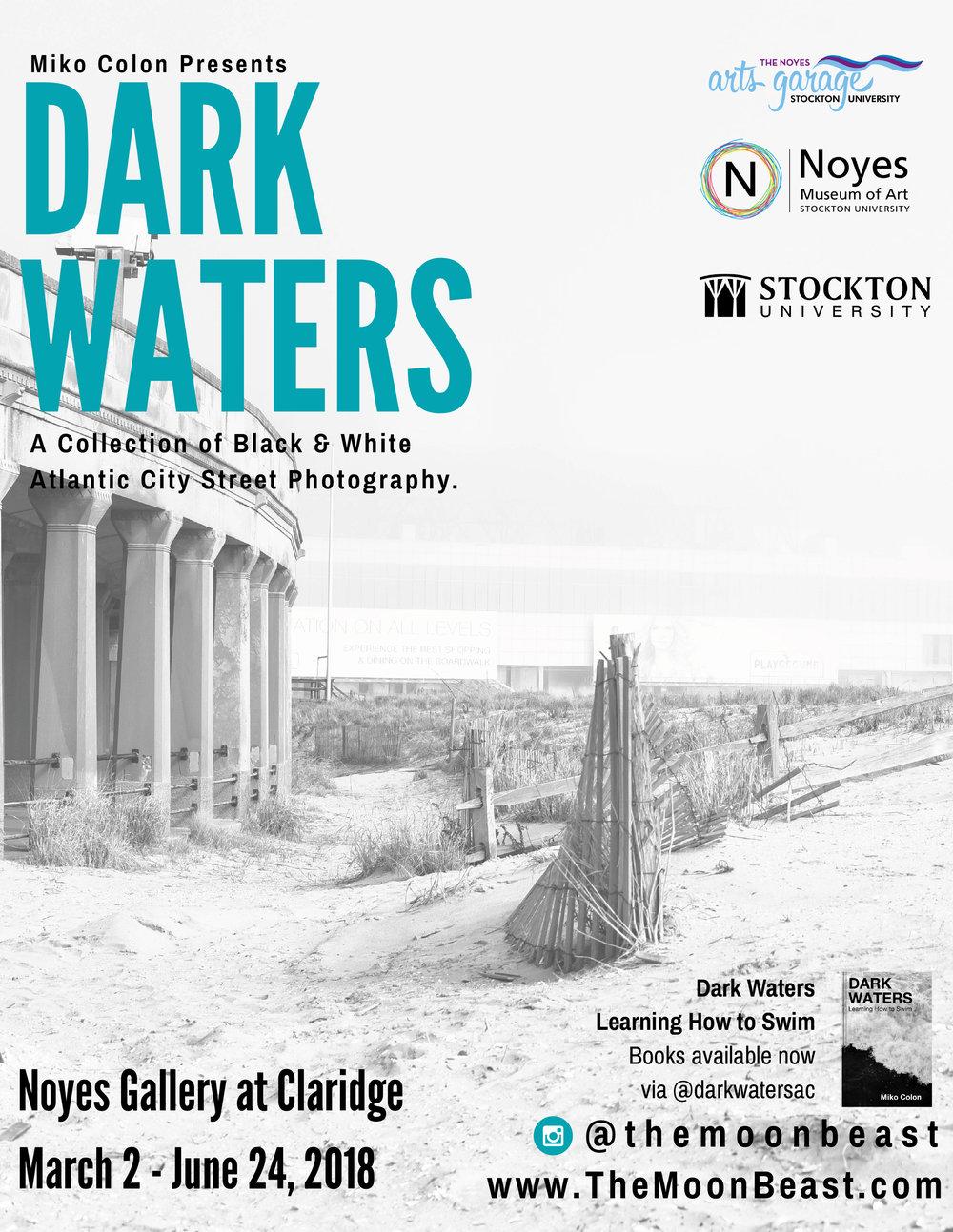 Copy of Darkwaters PROMO POSTER-3.jpg