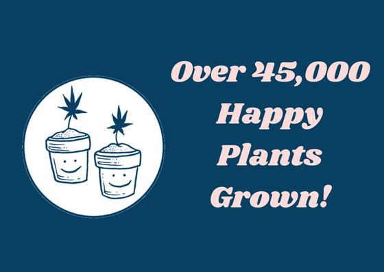 happy Plants.jpg