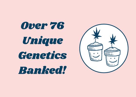 Genetics (2).jpg