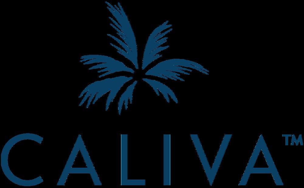 Caliva_Wordmark_Vertical_Blue_1200px.png
