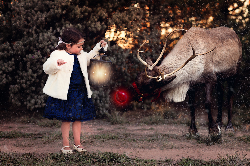 Midland Texas Christmas Mini Photos