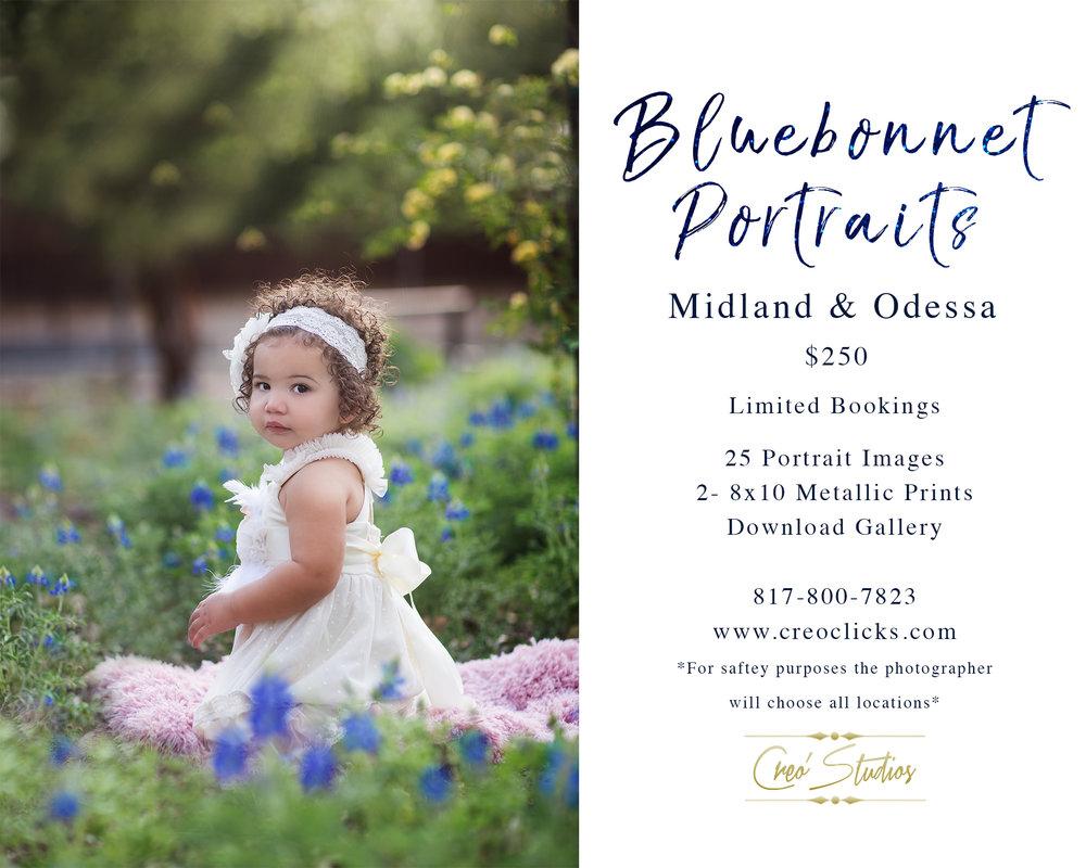 Odessa TX Bluebonnet Pictures
