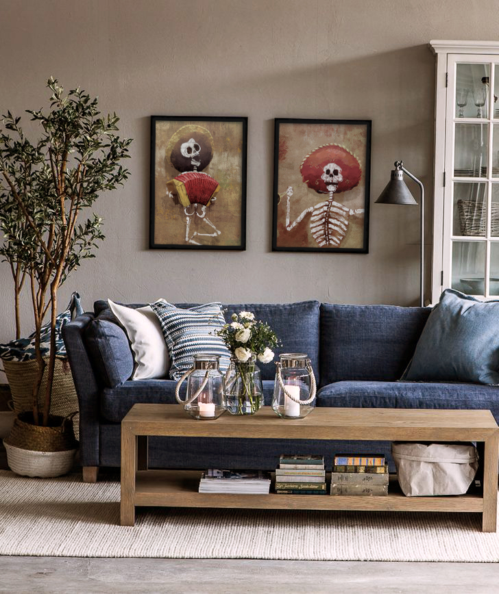 trendy-ideas-blue-living-room-furniture-16-i-want-a-jean-couch.jpg
