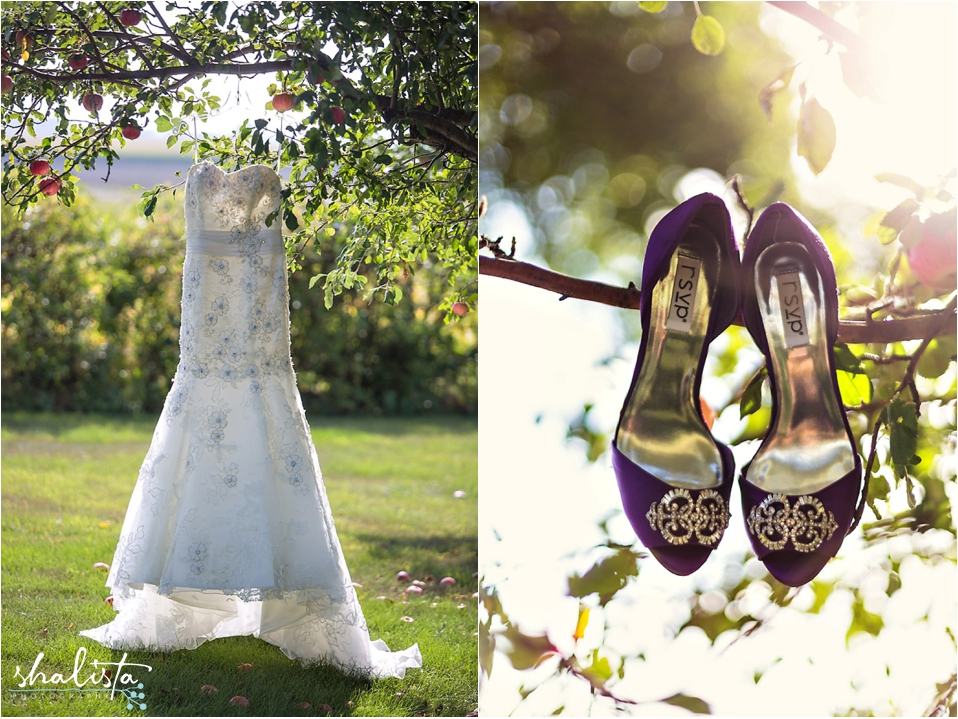 Wedding Dress and Shoes hanging in tree