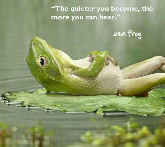 Shut up, Zen Frog.