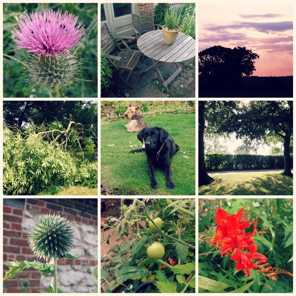 Creative Countryside - July in the Garden