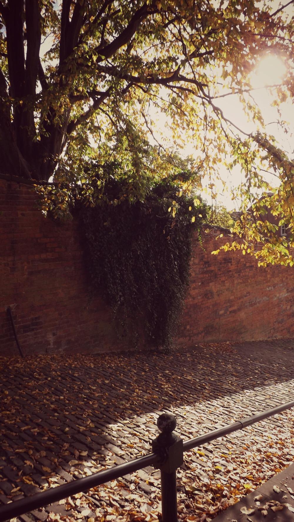 Lincoln-Creative-Countryside