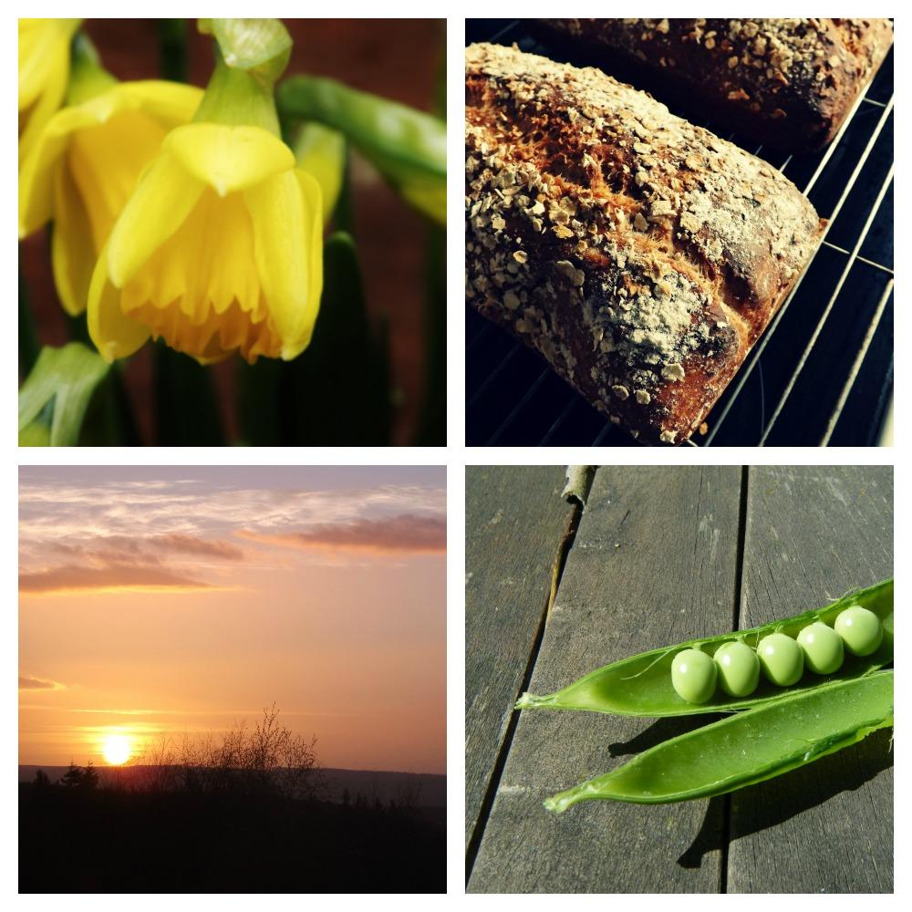 Spring-2014-Creative-Countryside