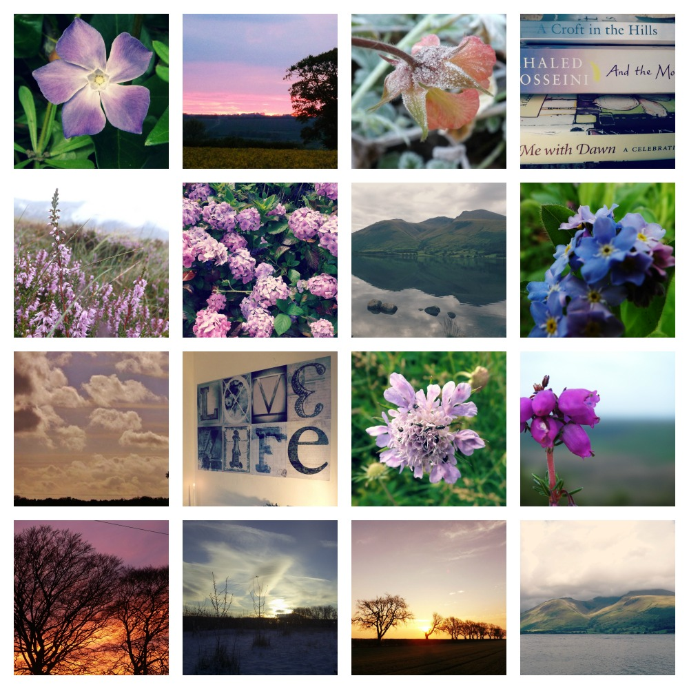 Purple-Collage-Creative-Countryside