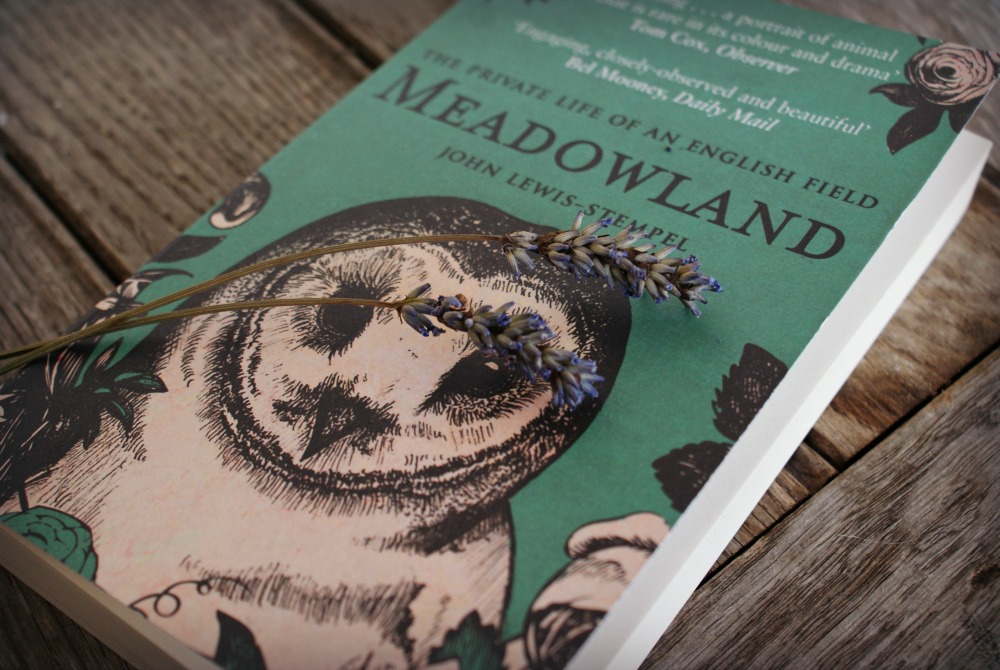 Book-Creative-Countryside