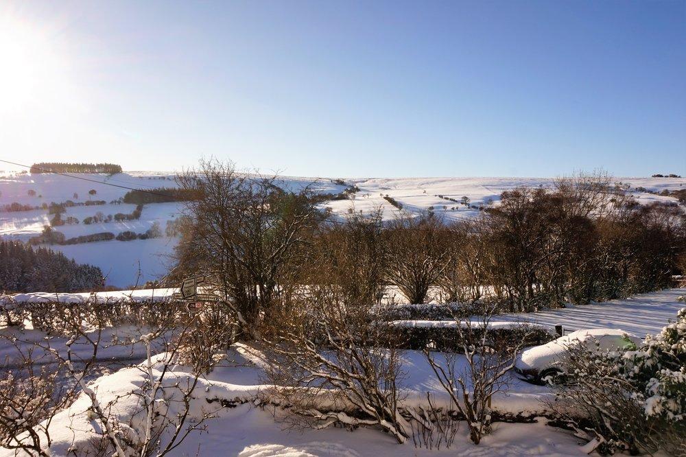 snow 5.jpg