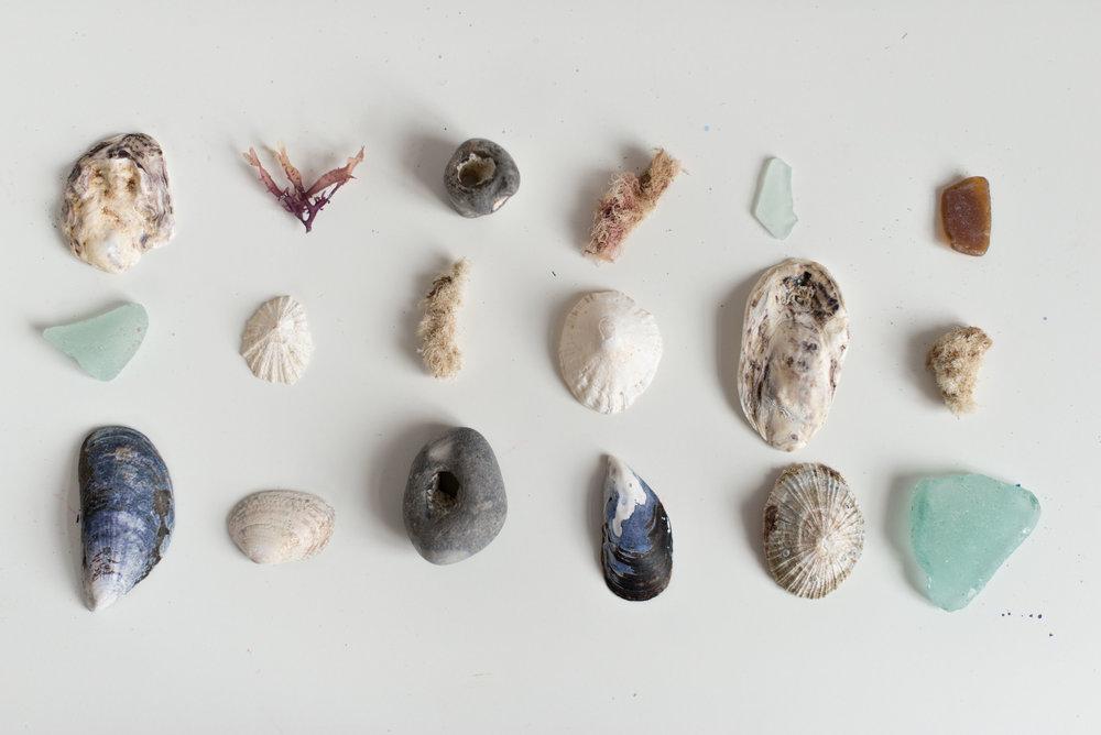 Salt & Sea Co.-1.jpg