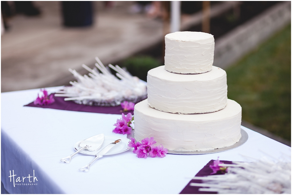 The Wedding Cake - Harth Photography