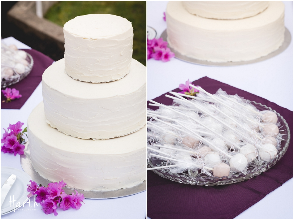 Wedding Cake and Cakepops - Harth Photography