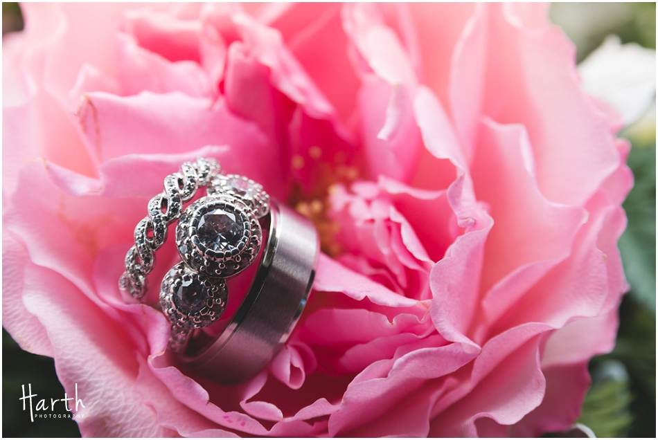 Wedding Rings | Harth Photography