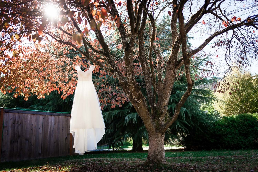 Portland Wedding Dress Hanging On Tree