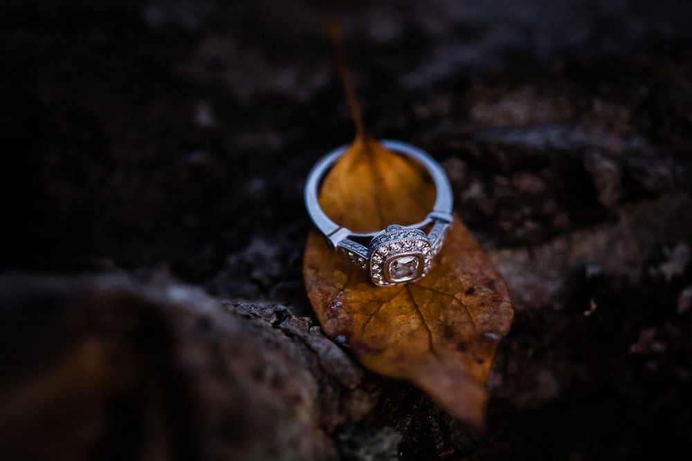 seattle-engagement-harth-photography-93.jpg