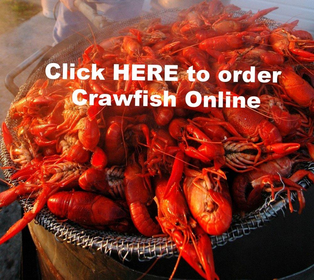 crawfish (2).jpg