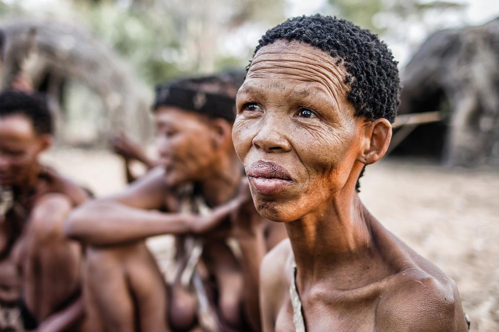 bushmen: a family life