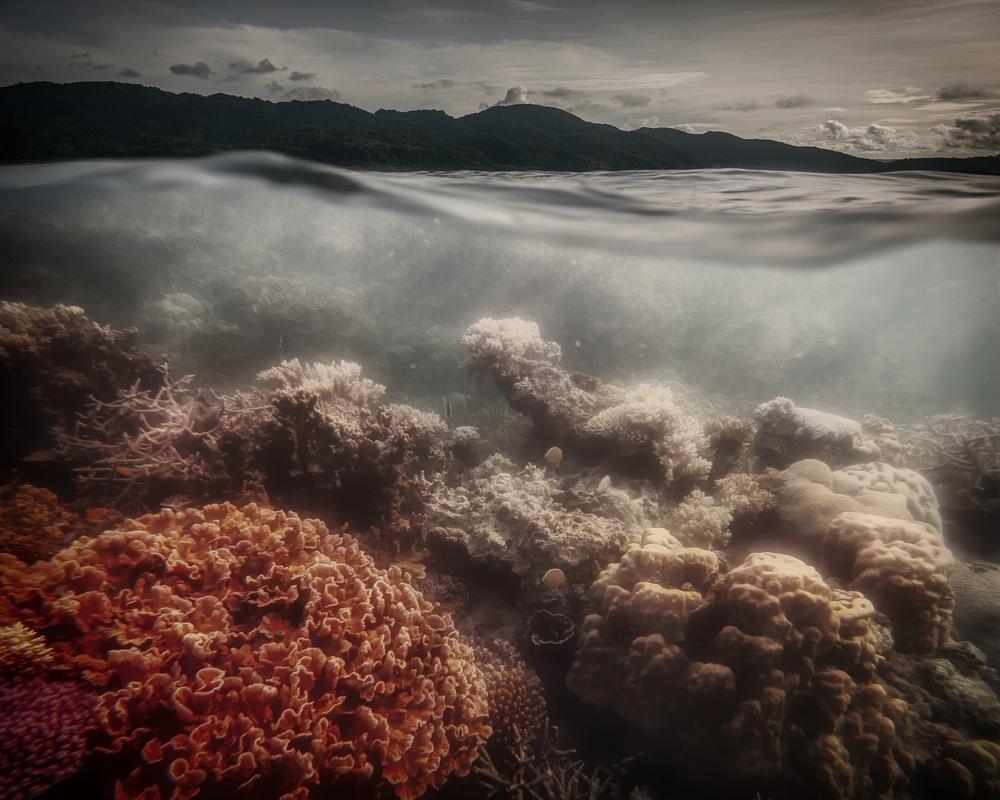 underwater evening