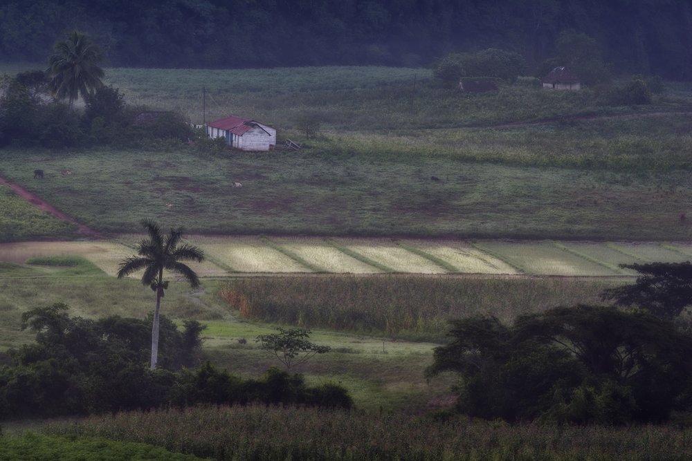 LOS AQUATICOS, CUBA