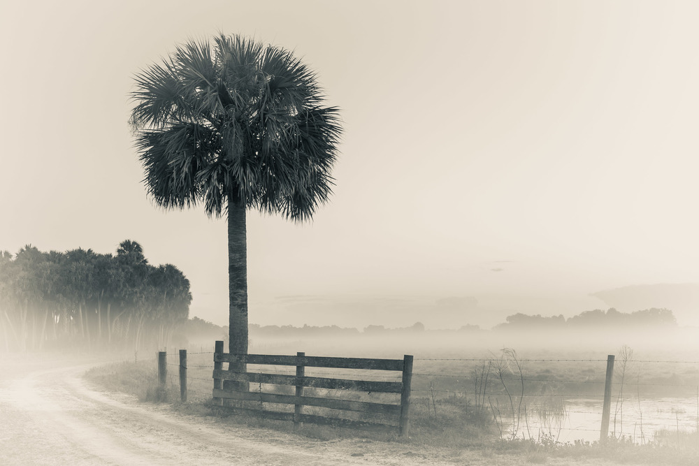 Adams Ranch, Florida