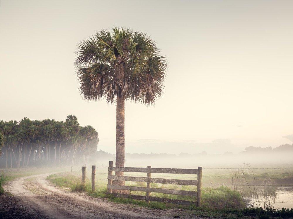 Highway 98, Florida