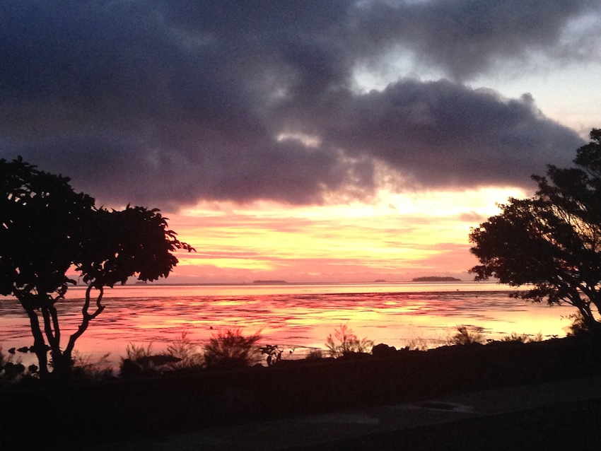 Kamaji Tree womens coaching centre_sunrise Tonga