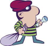 Burglar%20novatech%20copy.jpg