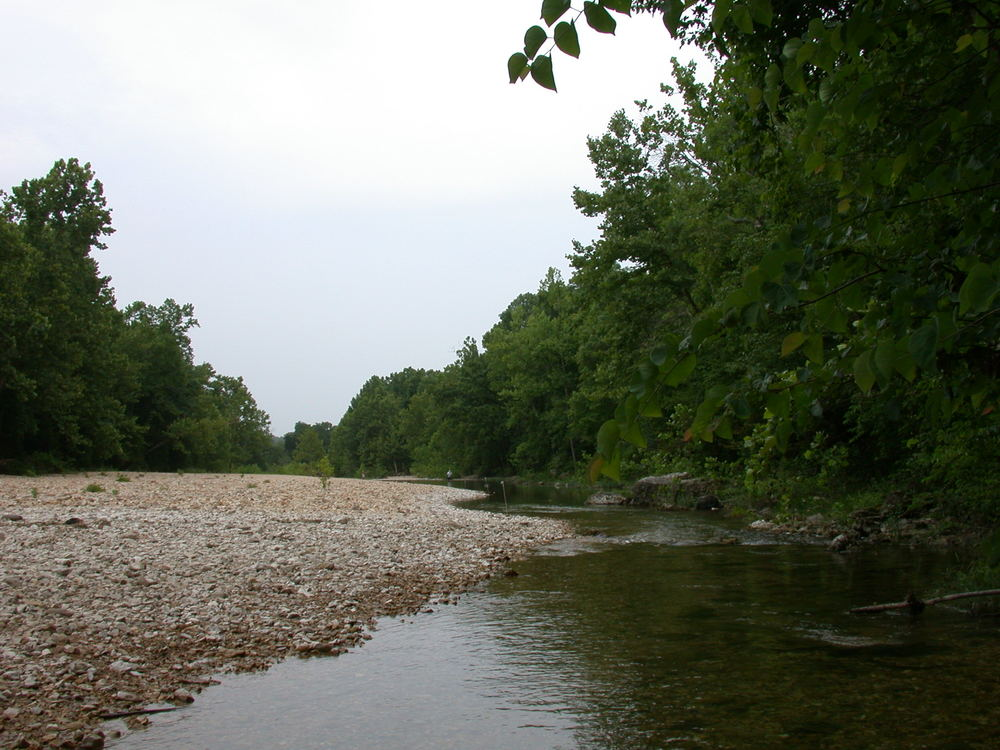 downstream from top of site 52-2.JPG