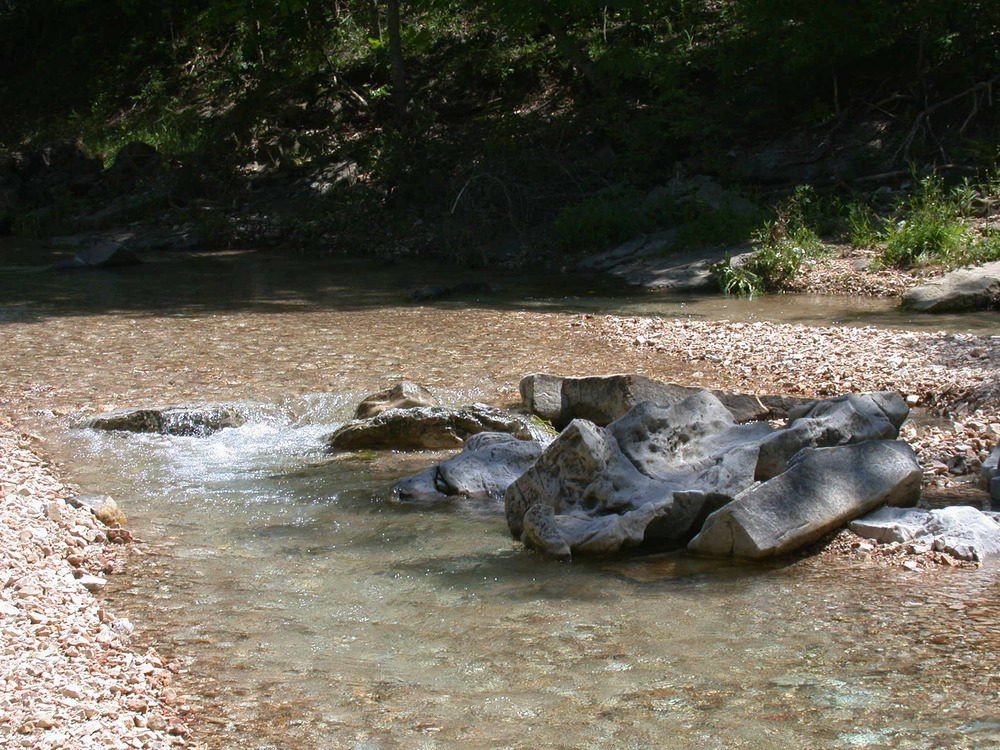 upstream of midpoint site 24.JPG