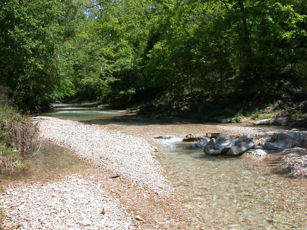 upstream of midpoint site 24-2.JPG