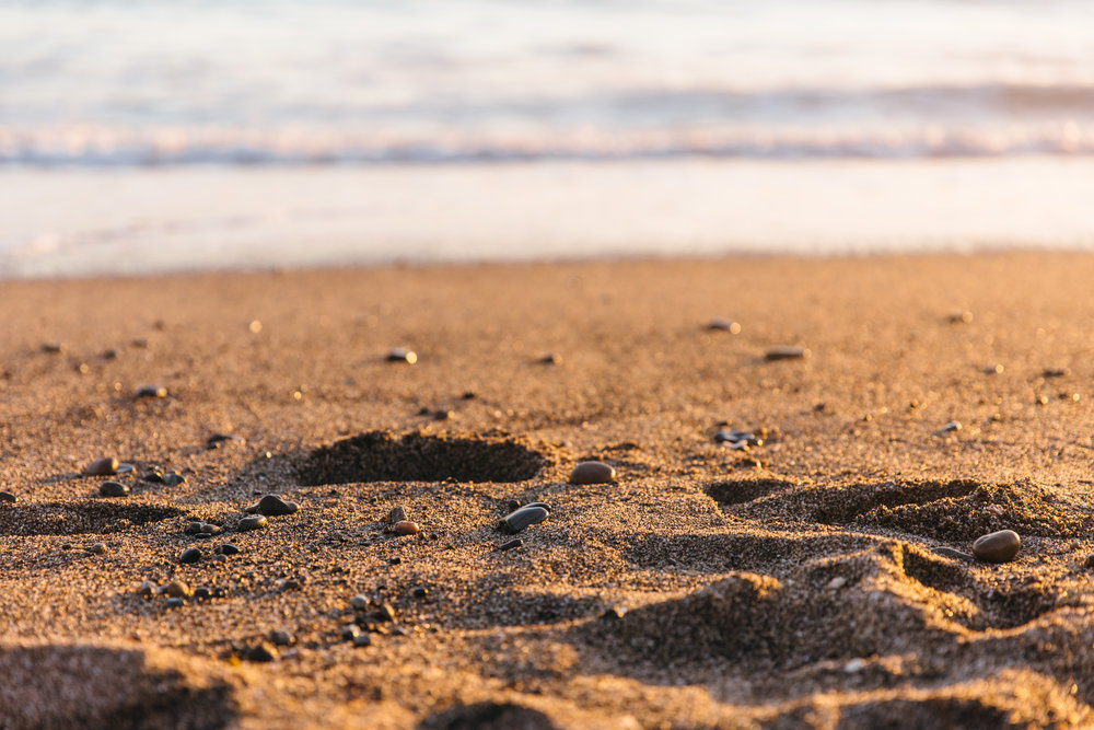 Eric_Kat_Beach-38.jpg