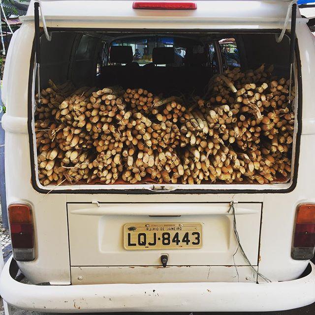 Caldo de cana - Saturday morning sugar cane juice #caldodecana #feirageneralglicerio