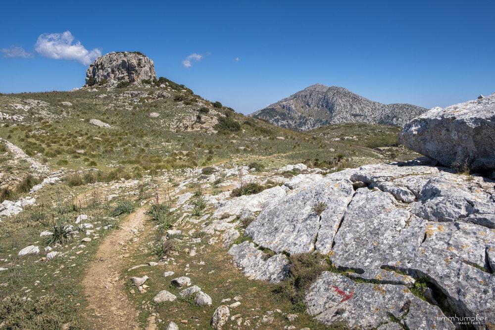 Kaiserwetter im Herzen der Serra de Tramuntana auf dem Weg nach Estellencs.