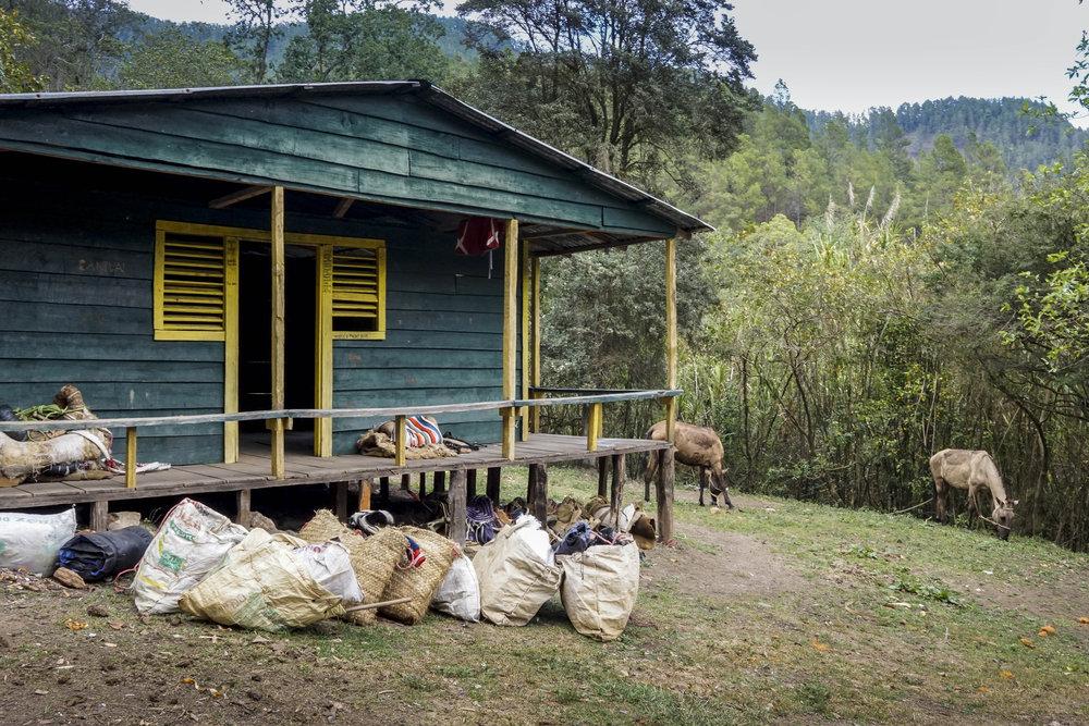 "Hütte ""Las Guacaras"" am Ende des ersten Tages."