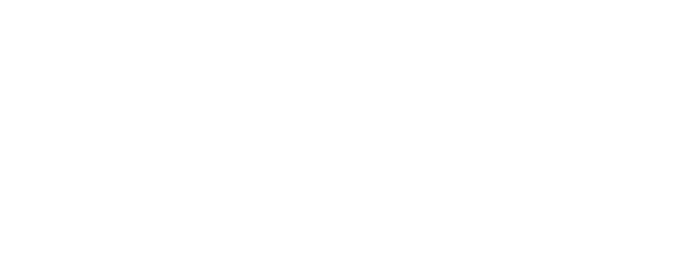 BOME Logo new boutique film agency only white.png