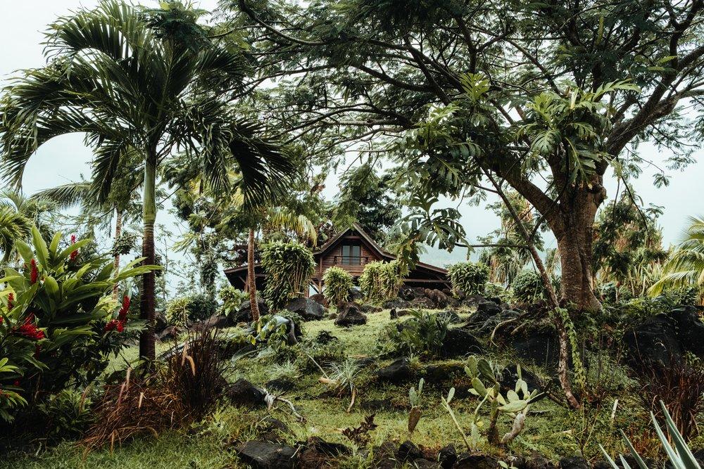 Guadeloupe-Buchowski-106.jpg