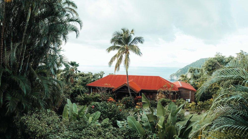 Guadeloupe-Buchowski-57.jpg