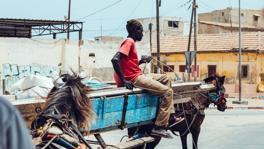 Senegal-16-9-21.jpg