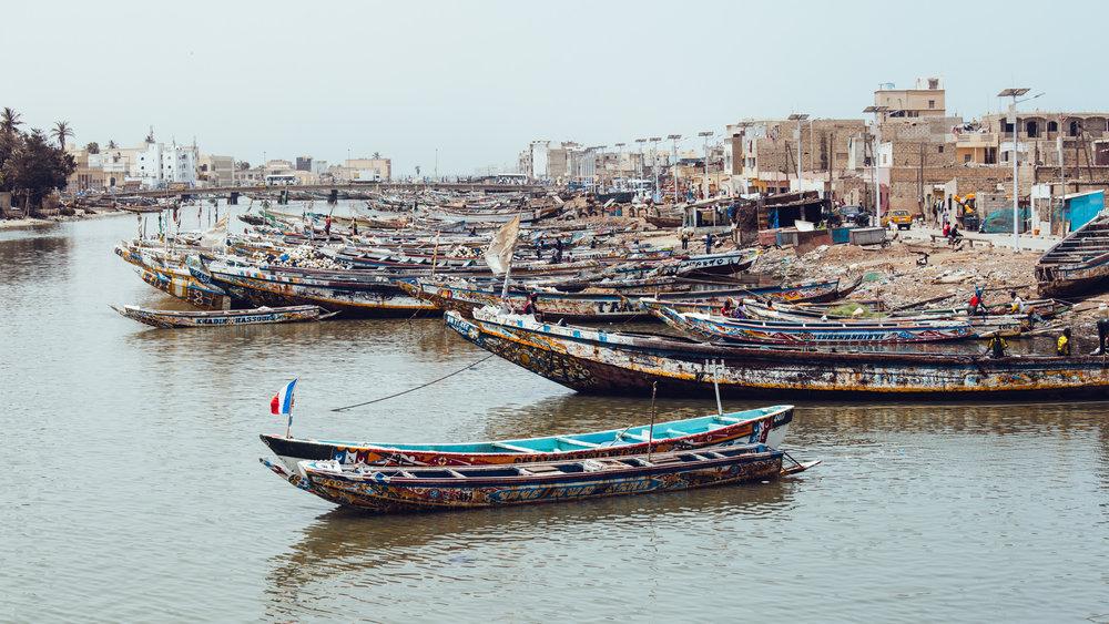 Senegal-16-9-20.jpg