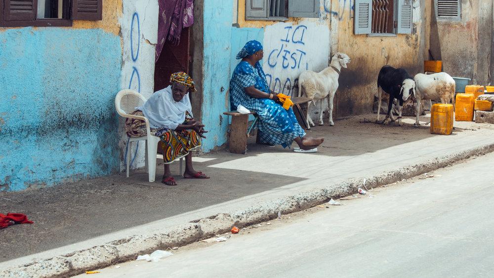 Senegal-16-9-24.jpg