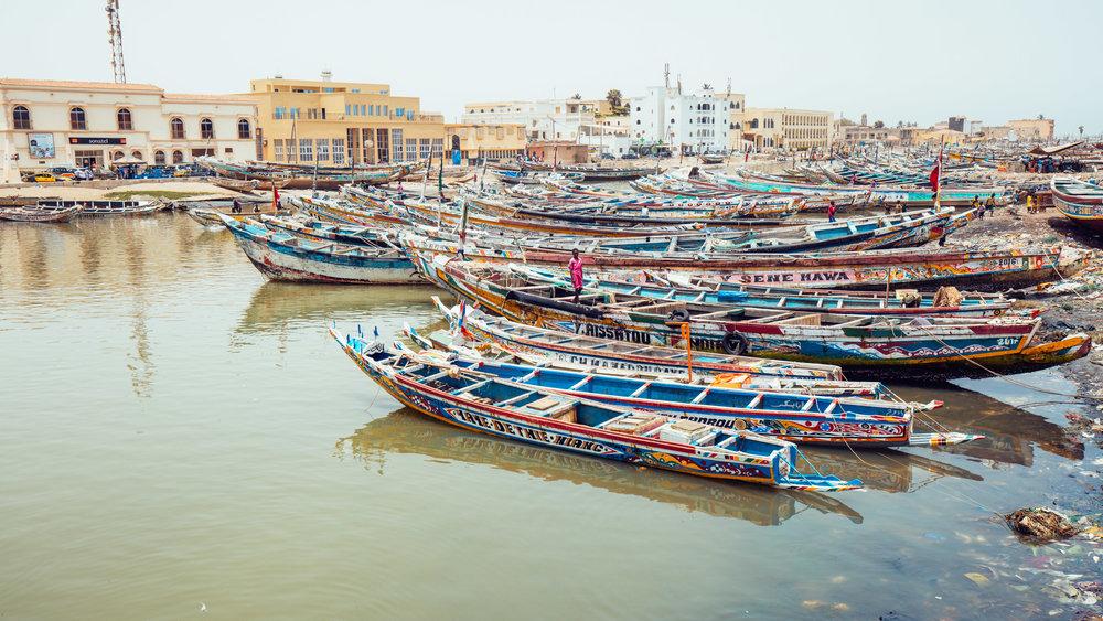 Senegal-16-9-36.jpg