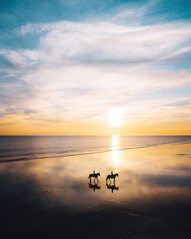 Un des plus beaux moments de notre séjour au @paysdesaintjeandemonts à la fin de l'été.  Je suis pas super à l'aise avec les chevaux, je garde mes distances contrairement à @vagabonde.tv qui retombe en enfance quand elle en voit un et les câline comme des peluches.  Même à l'écart, j'ai pu vivre un spectacle plein de grâce  et de poésie. - - - #vendée #beautifuldestinations #somewheremagazine #modernoutdoors #horses #sunset #passionpassport