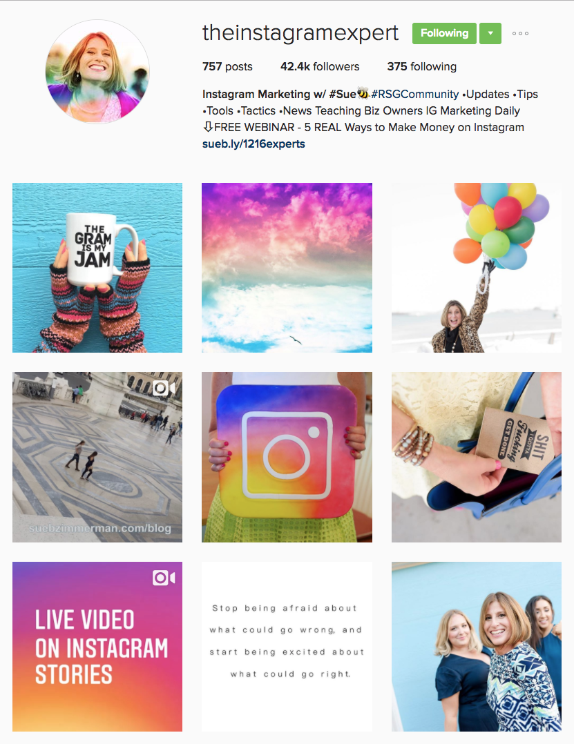 Instagram Influencer: Sue B. Zimmerman @theinstagramexpert