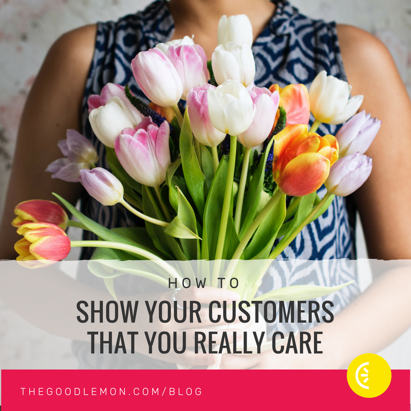 How to Show Your Customers You Really Care - instagram.png