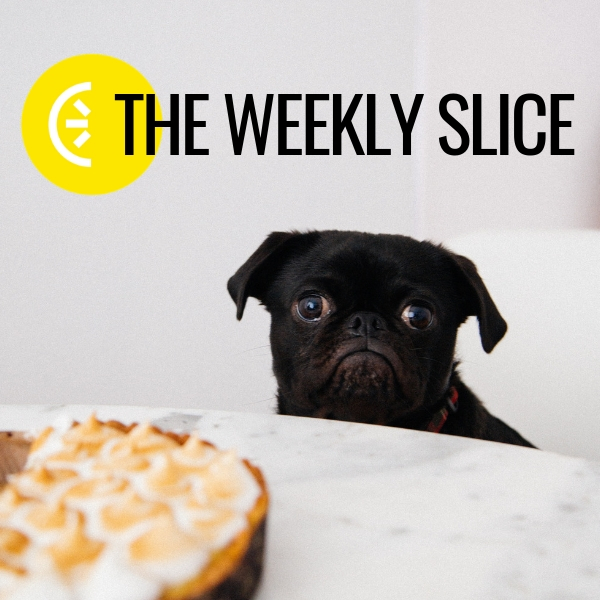 The Weekly Slice - Welcome