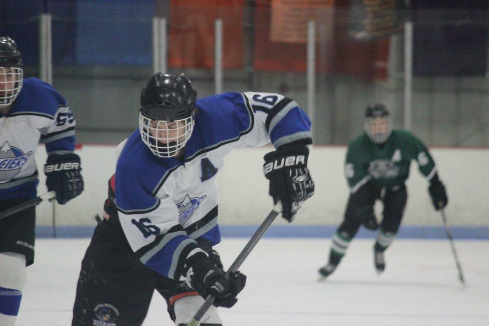 hockey player with type 1
