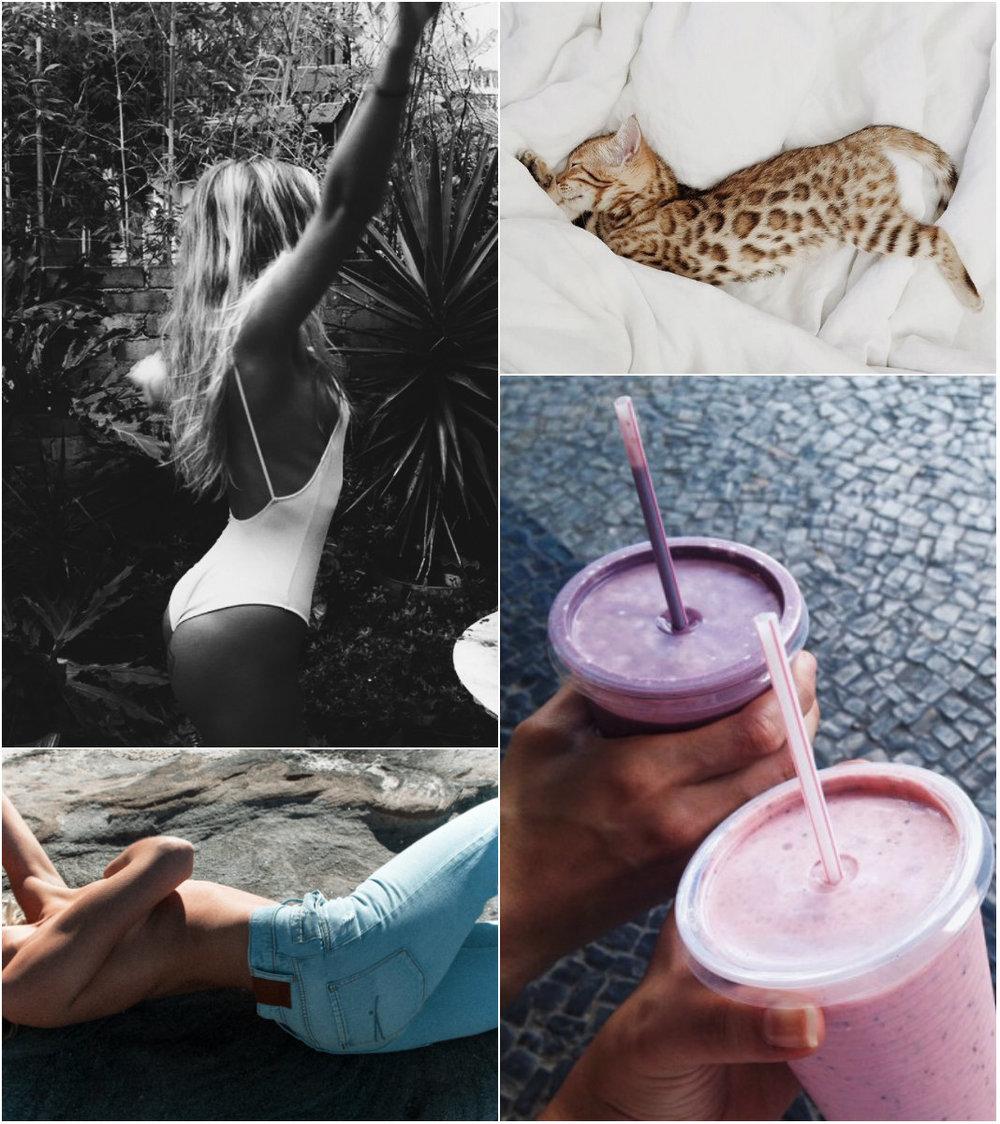 collagesg.jpg